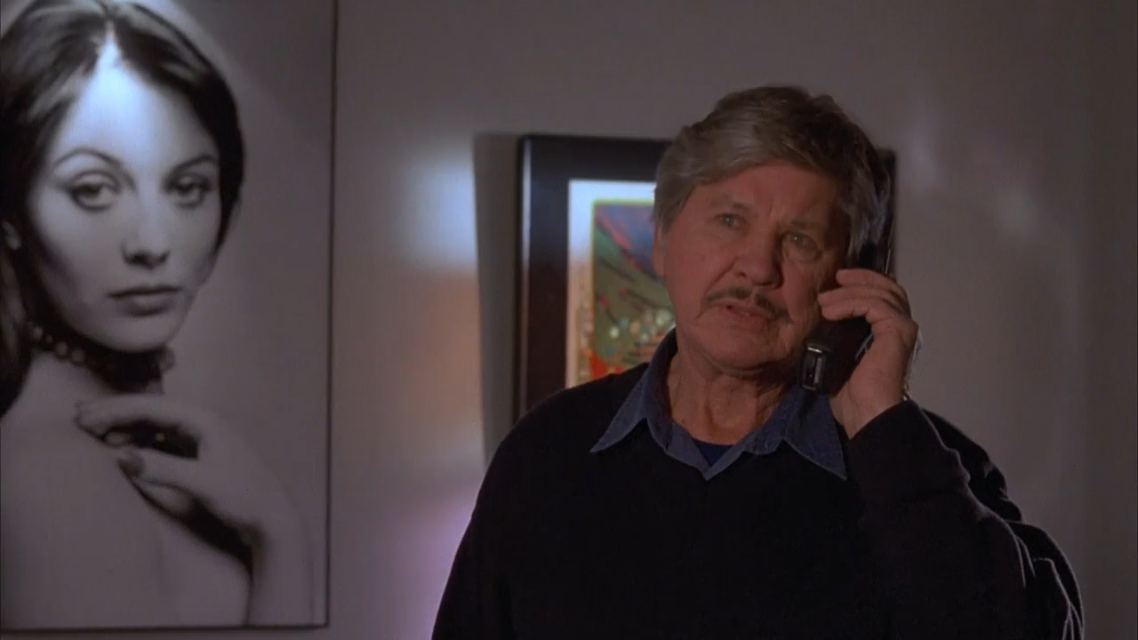 Death Wish 5: The Face of Death (1994)