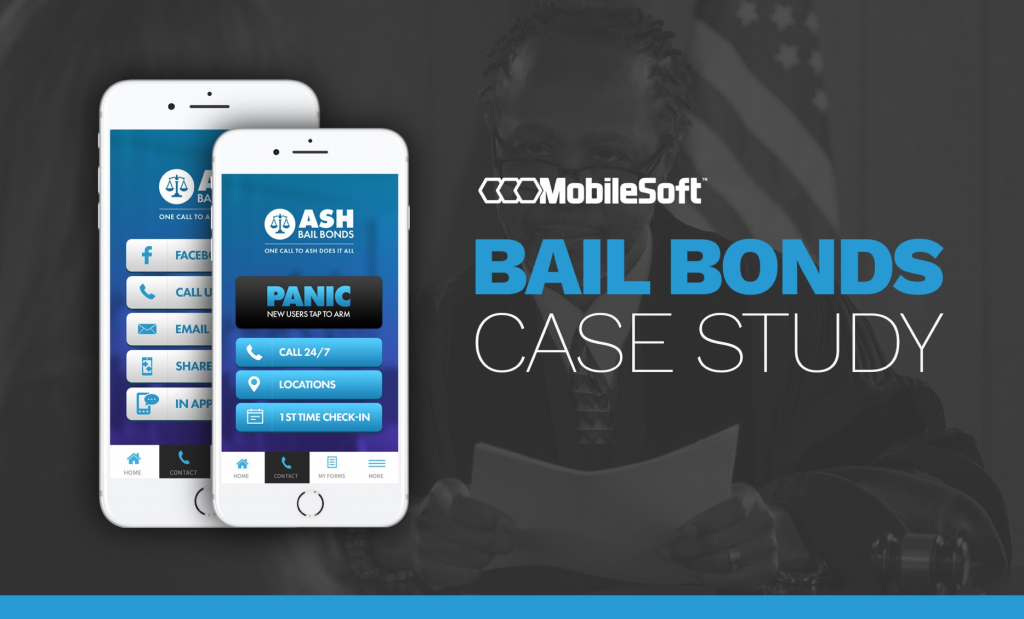 Bail-Bonds-Case-Study