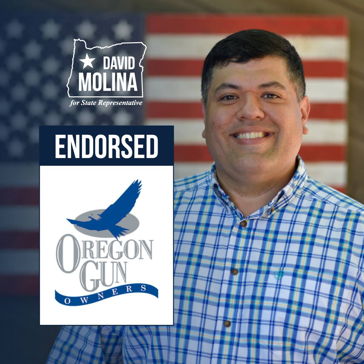 The largest group representing gun owners in Oregon backs former Army Captain David Molina to represent western Washington County in the Oregon Legislature