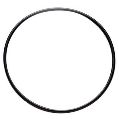 Picture of Denso 954-0001 Fuel Pump Tank Seal