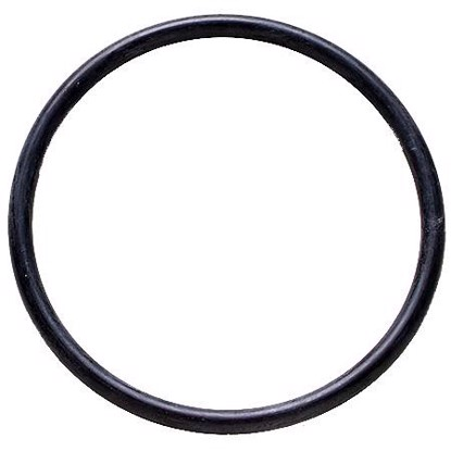 Picture of Denso 954-2009 Fuel Pump Tank Seal