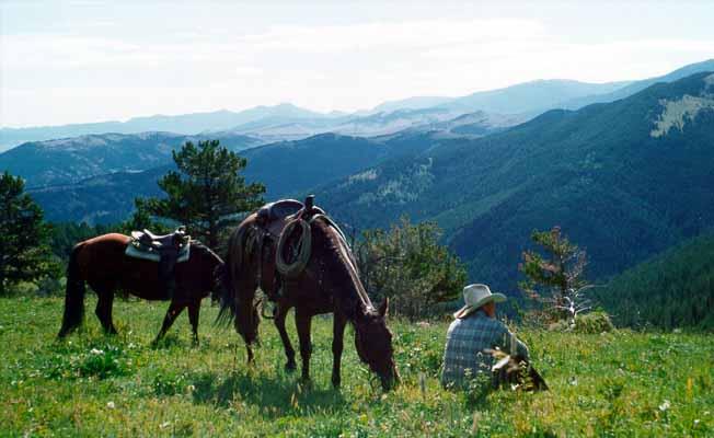 63 Ranch profile image