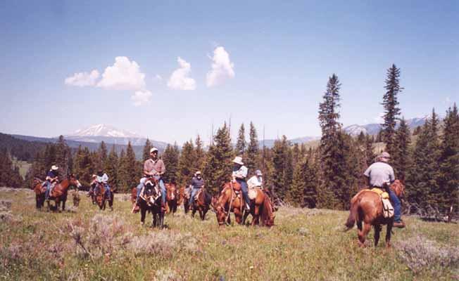 Broken Hart Ranch, Inc. profile image
