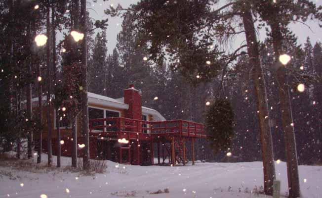 Southern Cross Cabin at Georgetown Lake profile image