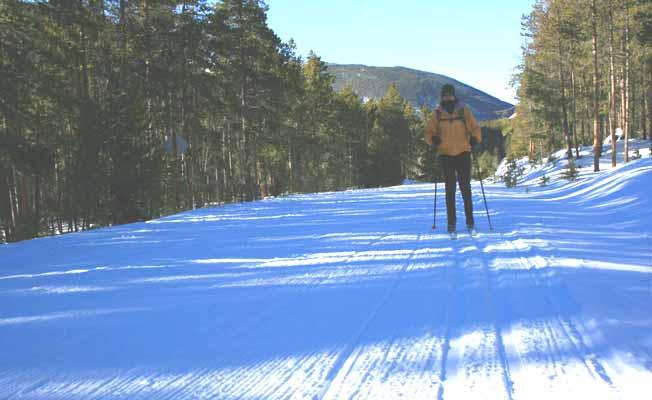West Fork of Rock Creek Road Ski Trail profile image