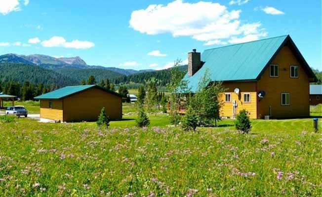Deer Meadow Vacation Home profile image