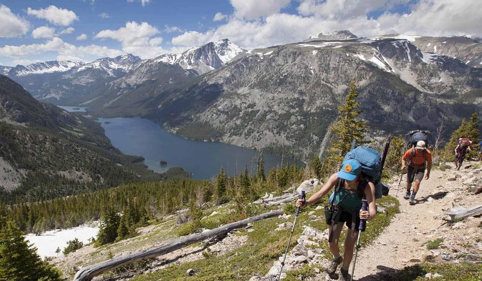 Montana Alpine Guides profile image