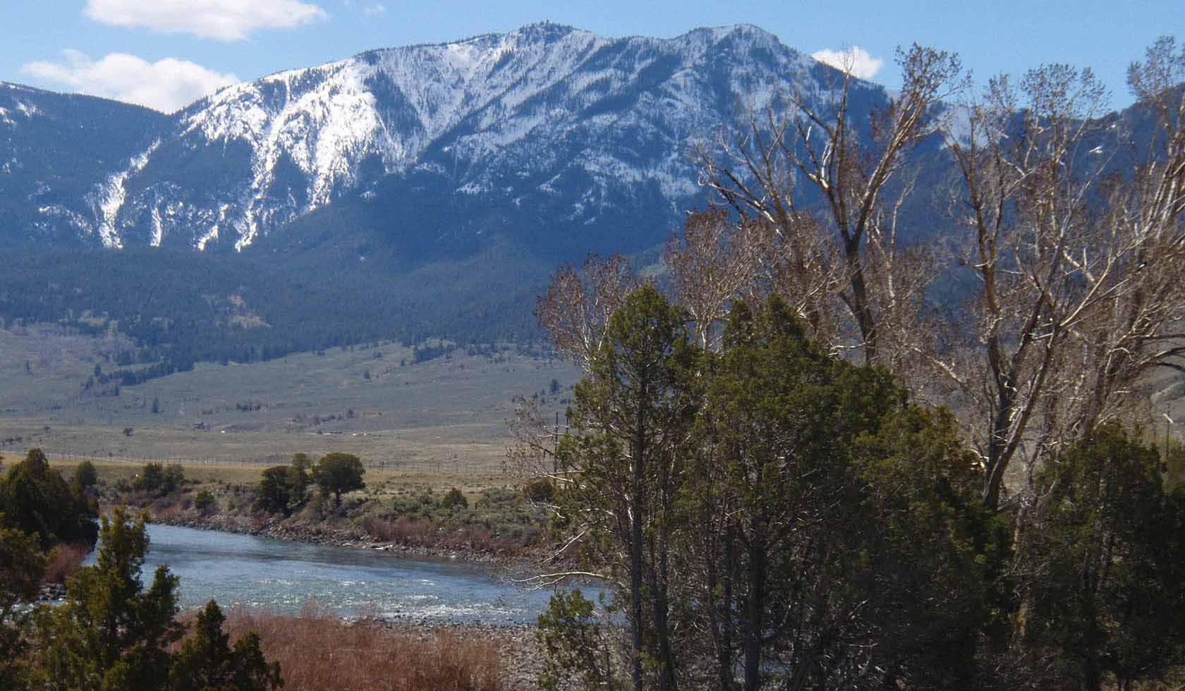 A Yellowstone Riverbend Cabin profile image
