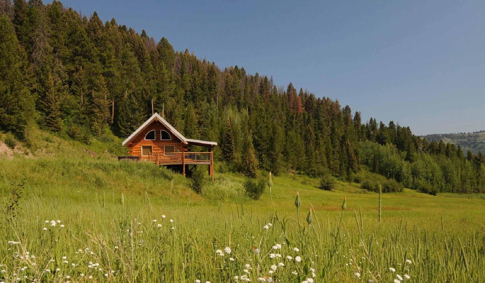 Goose Creek Cabin profile image