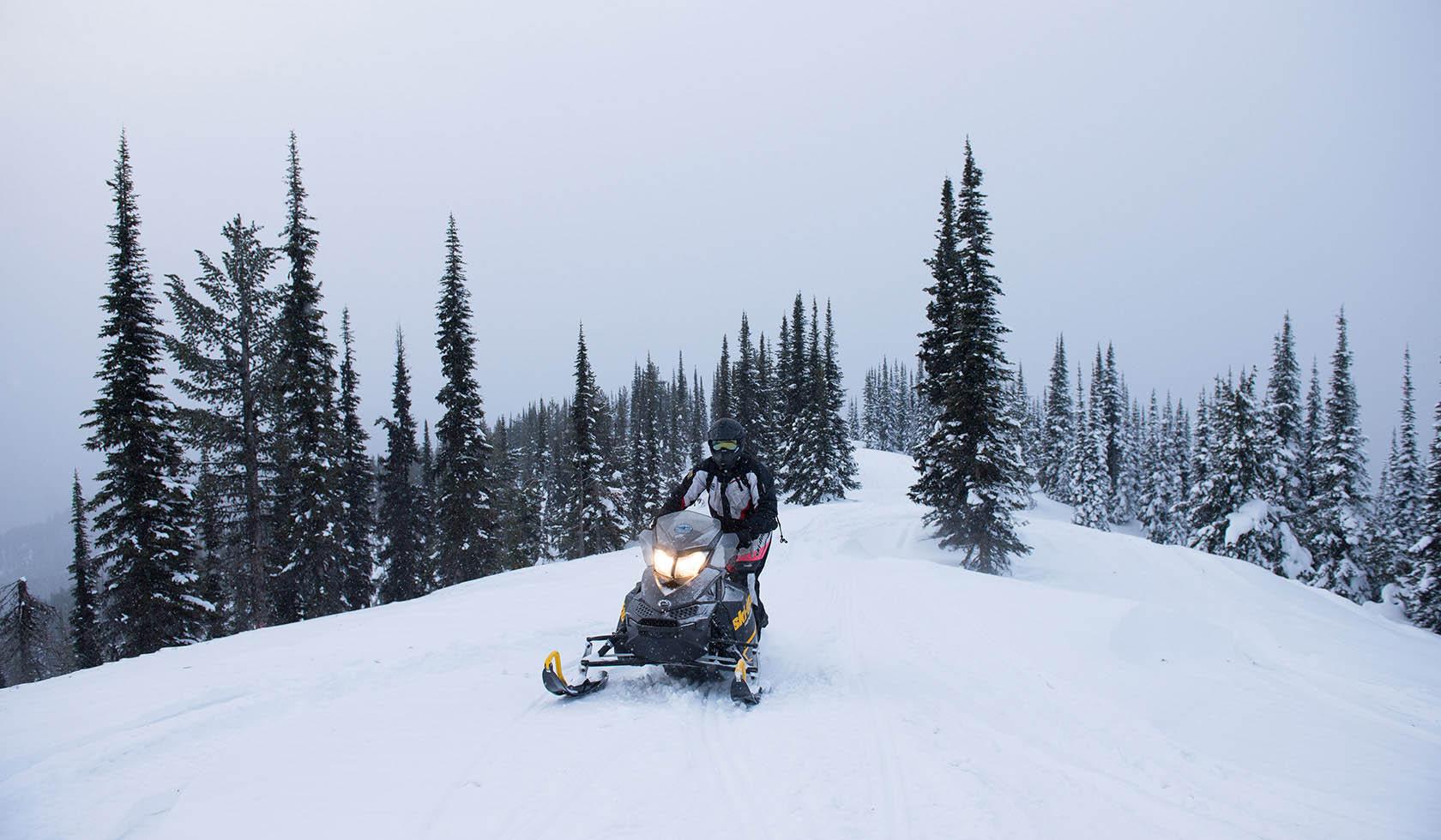Doe/Buck Creek Snowmobile Trail profile image