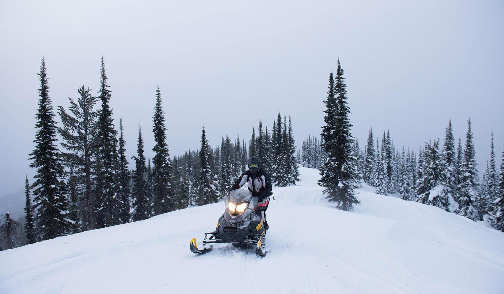 Miller Loop Snowmobile Trail profile image