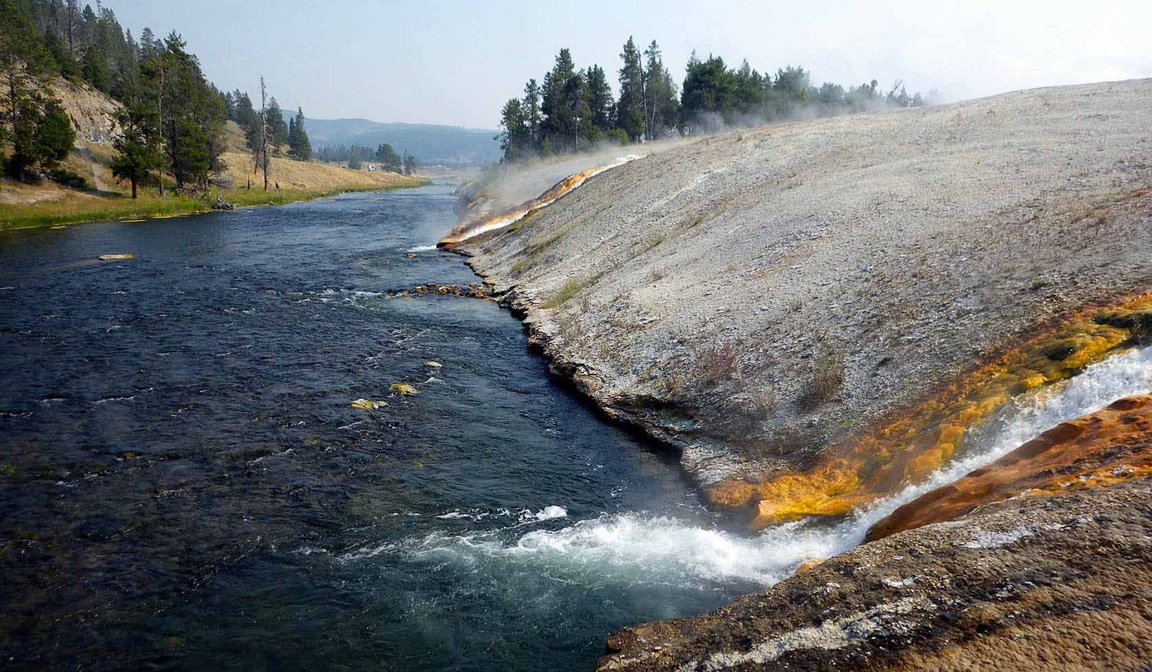 Yellowstone Scenic Tours profile image