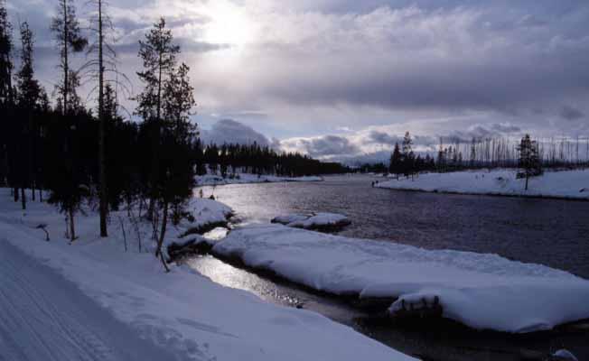 Yellowstone Alpen Guides profile image