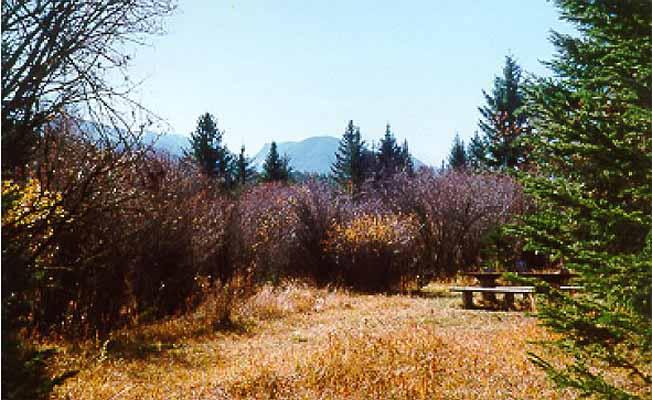West Boulder Campground profile image