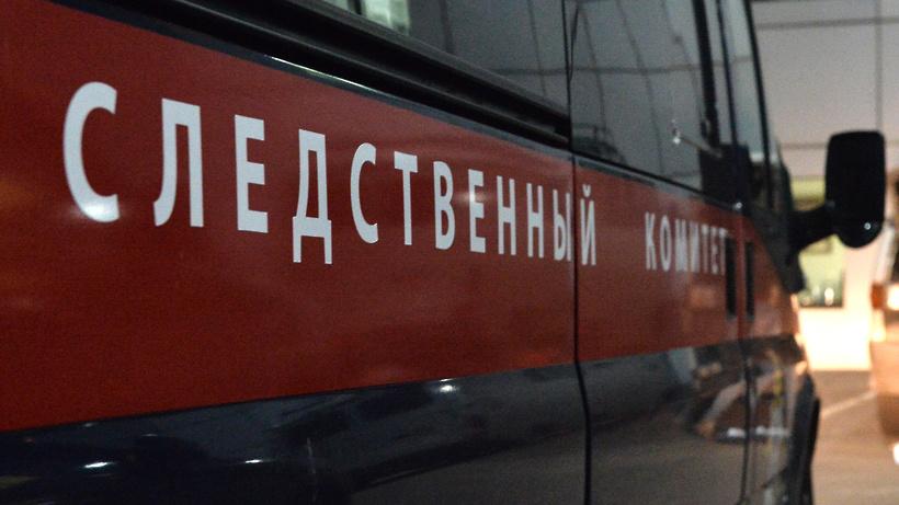 СК возбудил дело об убийстве после пропажи 12-летней девочки в Москве