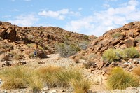 Desert landscape in western South Africa