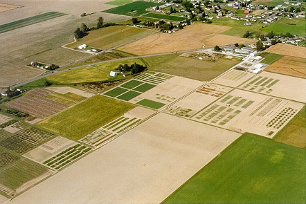 Aerial Photo of WSU Mount Vernon NWREC1998