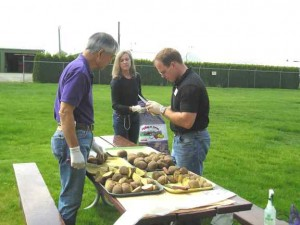 Three researchers cutting potatoes at an outdoor picnic table.