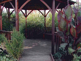 Garden gazebo surrounded by plants.