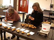Researchers examine specimens and record findings in the lab.