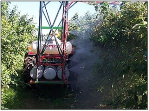Tractor-mounted sprayer applying miticide to red raspberry canes.