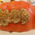 Close-up view of severe edema symptoms on a pumpkin.