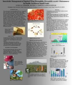 Research poster (view larger)