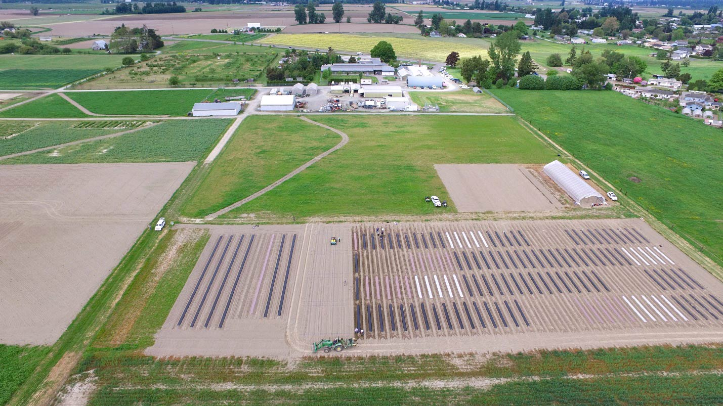 Aerial view of trial plots (foreground) with NWREC facilities in the distance.