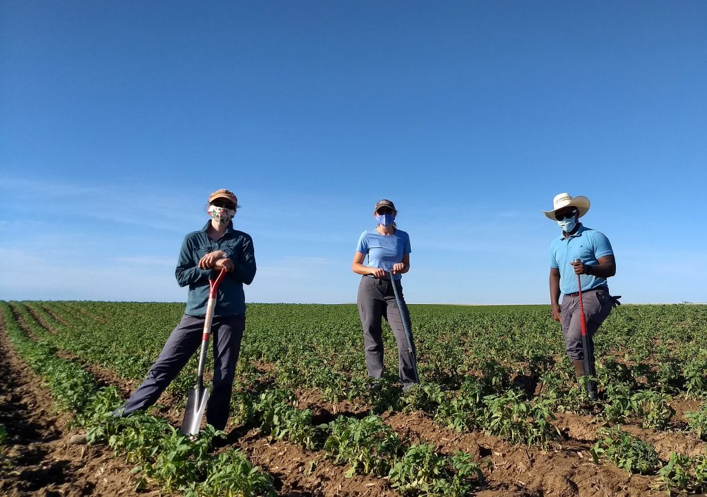 Three people stand with soil sampling tools in a field.