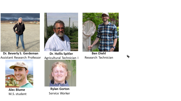Members of the Entomology Program