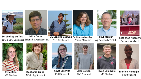 Members of the Vegetable Seed Pathology Program