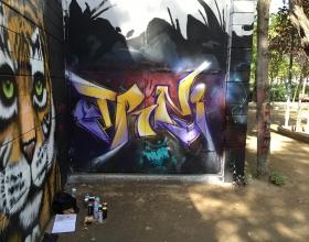 Wallspot - Truniii -  - Barcelona - Drassanes - Graffity - Legal Walls -