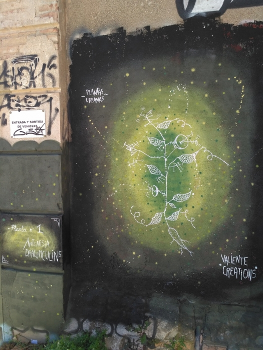 Wallspot - evalop - Plantas urbanas - Barcelona - Selva de Mar - Graffity - Legal Walls - Illustration - Artist - Valiente Creations