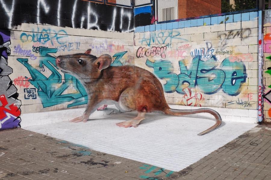 Wallspot - Fer Alcalá - Rata anamórfica - Barcelona - Drassanes - Graffity - Legal Walls - Others - Artist - S.Waknine