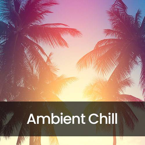 Calm Ambient Chill
