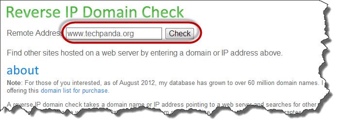 Giao diện check IP của tên miền