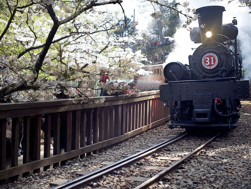 Take the Alishan Forest Railway