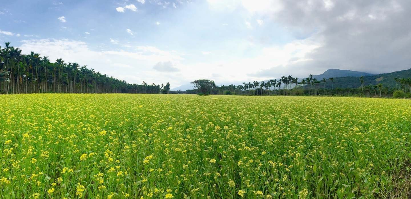 Hot Springs & Flowers: Eastern Taiwan Cycling Tour