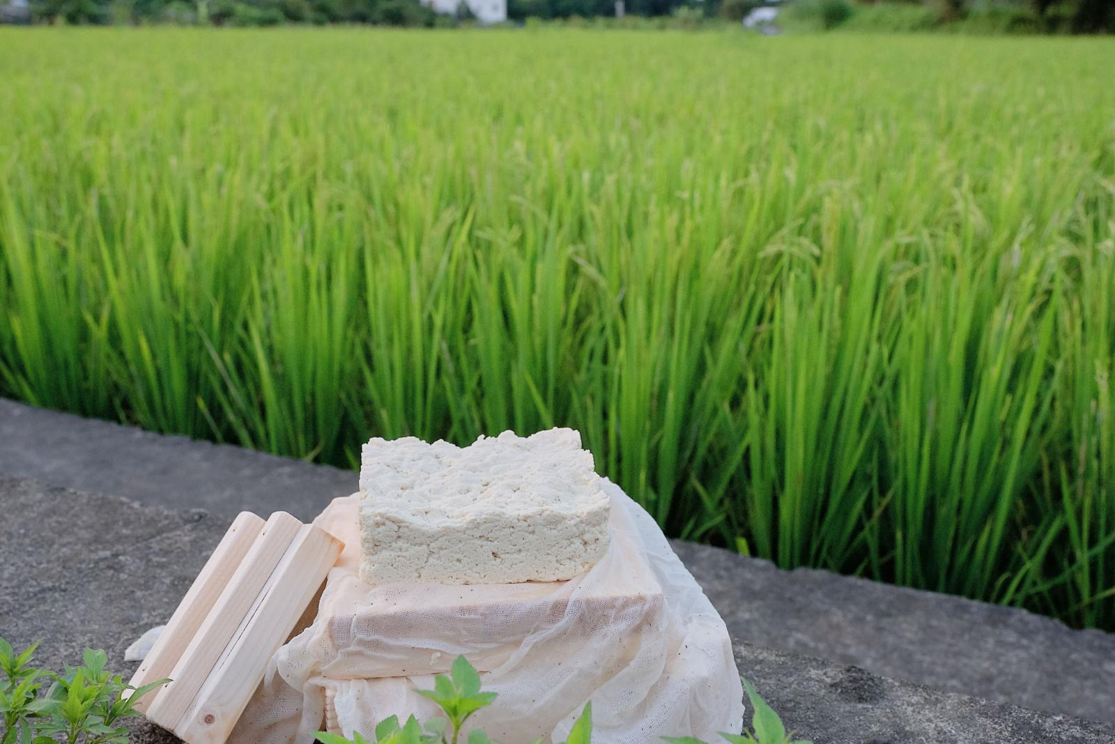 DIY Daxi Tofu in wooden mold