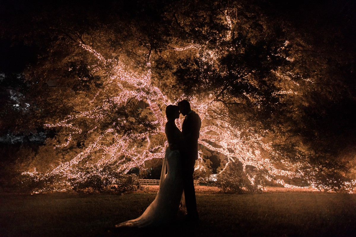 Manor House Wedding at The Houstonian Hotel Tree Bride and Groom Portrait