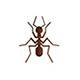 West Palm Beach Pest Control