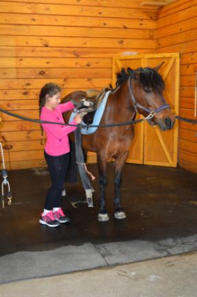 Ellie Apollo prepares a pony for riding at Apollo Farms in Palmerton. KRISTINE PORTER/TIMES NEWS