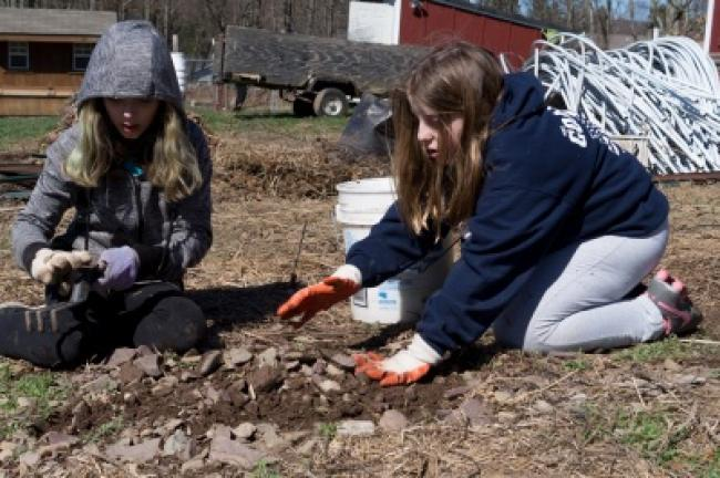 Rayann Martini, 11, and Jenev Collaro, 11, both with Girl Scout Troop 50556, work on clearing a field of rocks and brush to prepare it for tilling and growing.