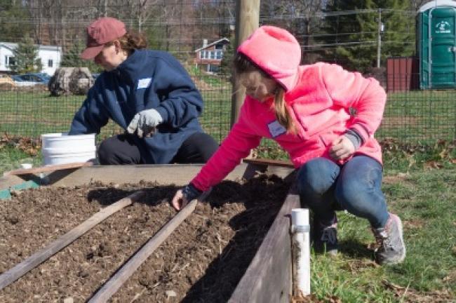 Jen Akod and Emma Meyers, 10, plant onion bulbs. Emma is a member of the Girl Scout Troop 50556. AMANDA J. TREIBLE/TIMES NEWS