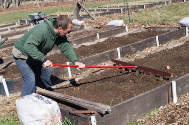 Doug Zimmer prepares the dirt for the onion bulbs to be planted.