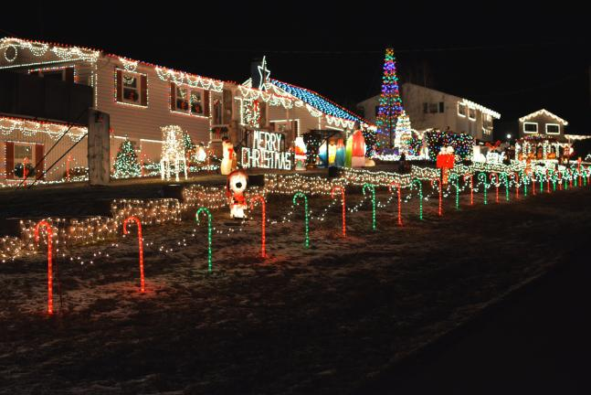 donald r serfasstimes news the spectacular 65000 light holiday display of frank - Christmas Light Tv Show