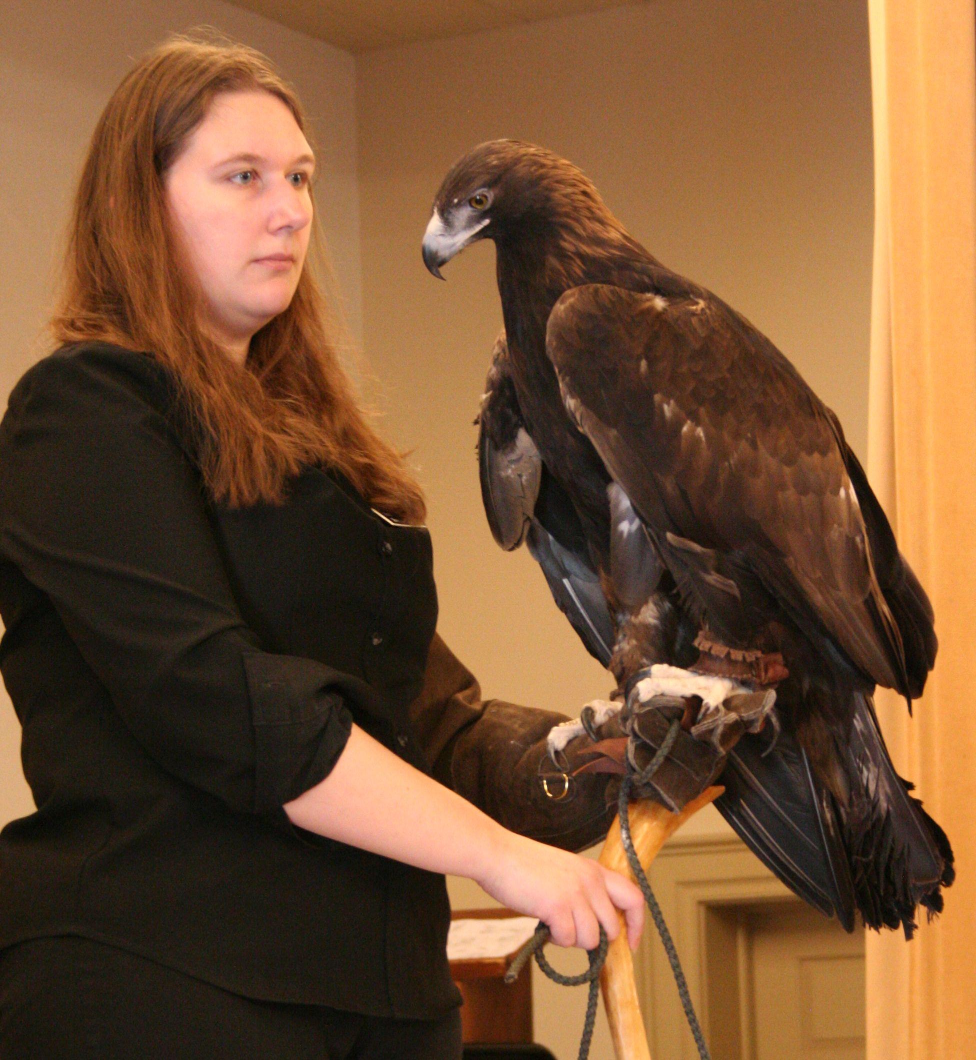 Live Birds Of Prey At Hubbard Foundation Wildlife Program | The