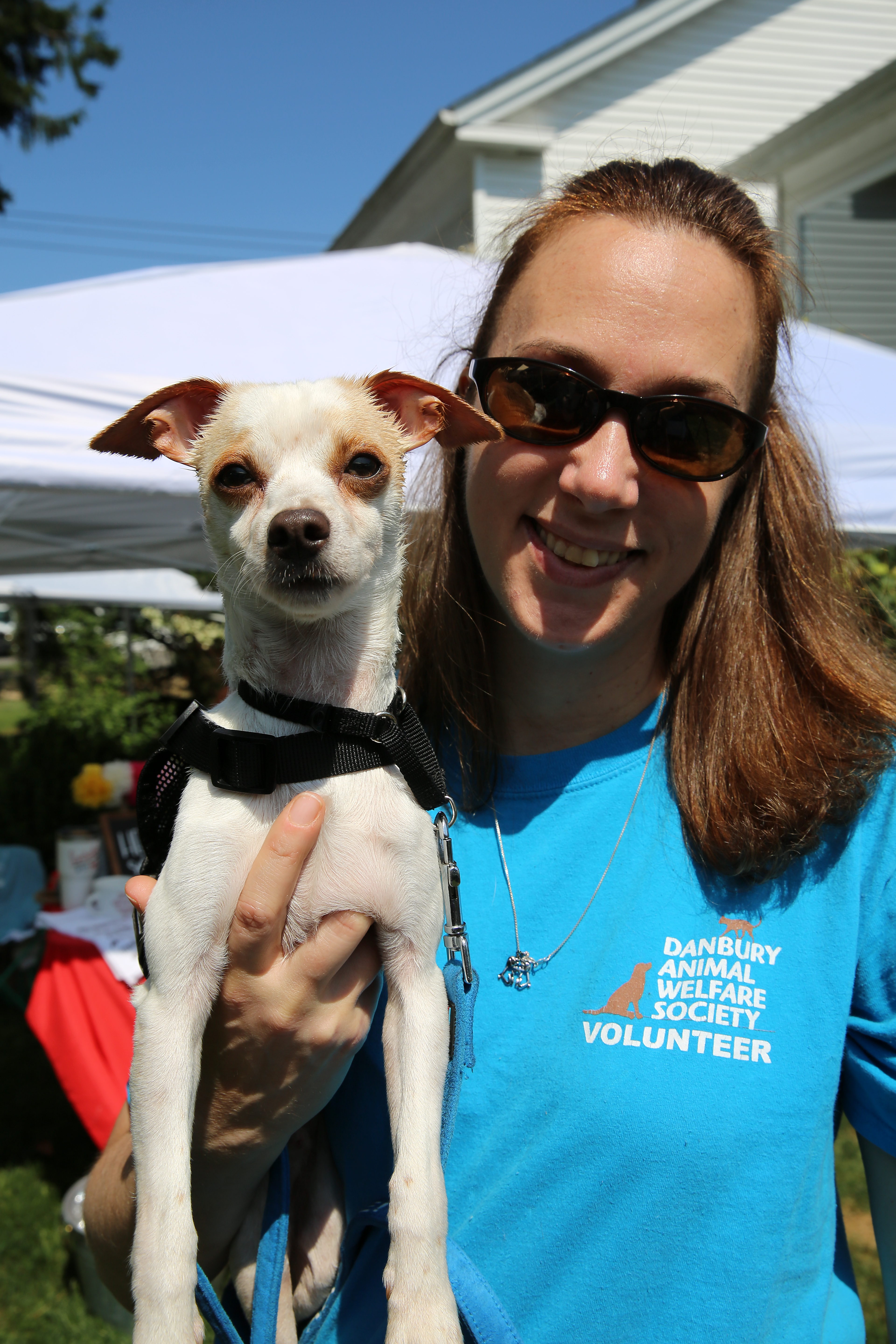 Paws, Smiles, And Finding New Friends At Adoption Event | The
