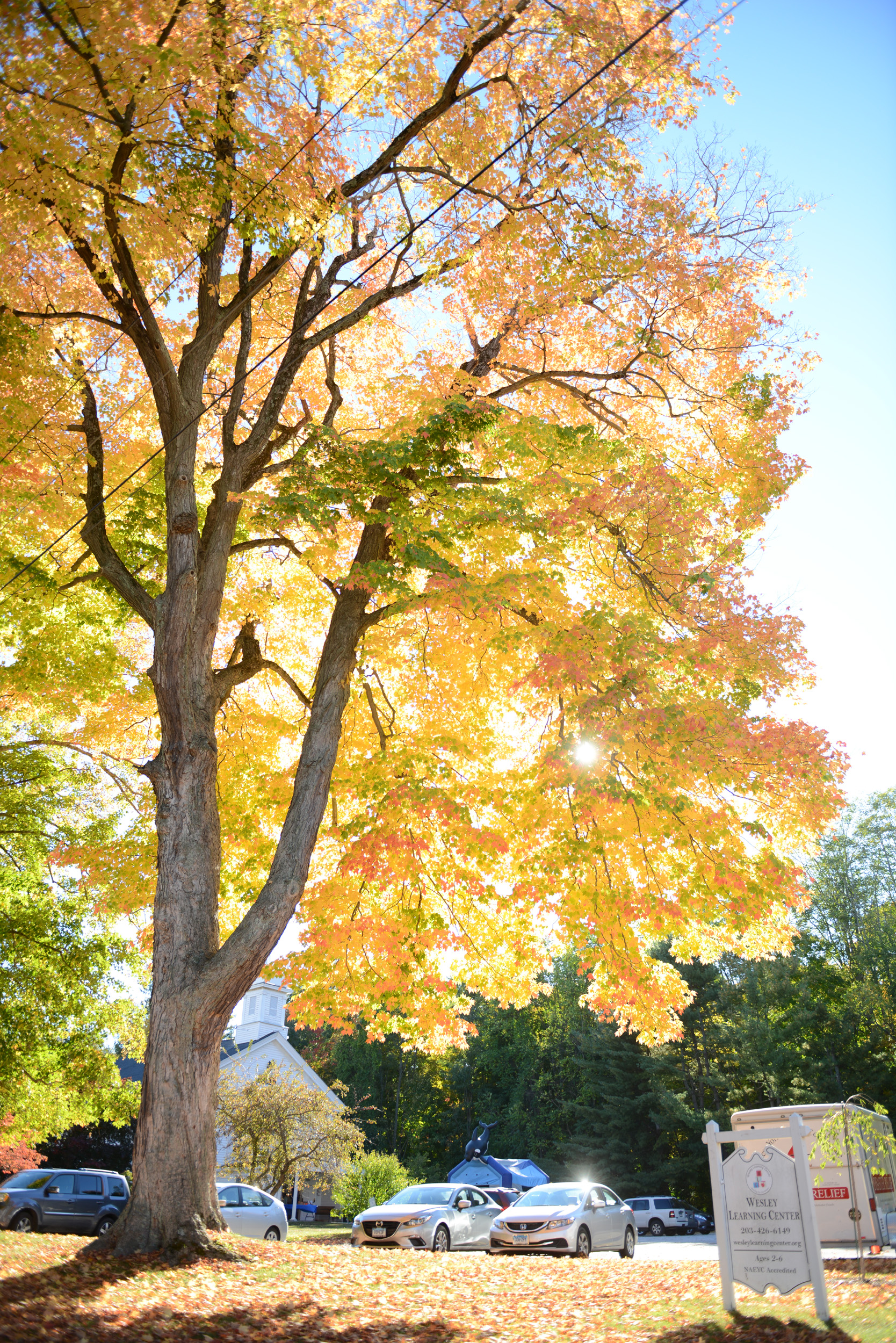 Discover The Best Places To See This Season s Fall Foliage  97ca5d7b2917