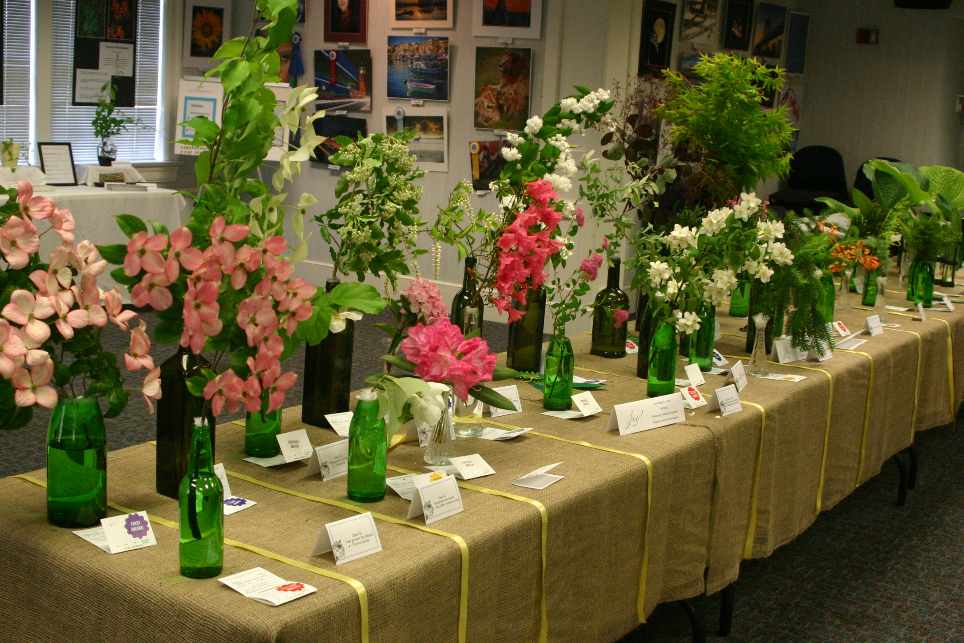 town & country garden club celebrating golden anniversary with